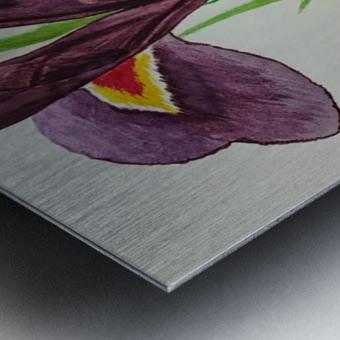 Irises Impression metal
