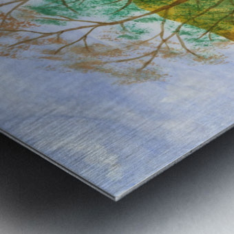 Falstone walk Metal print