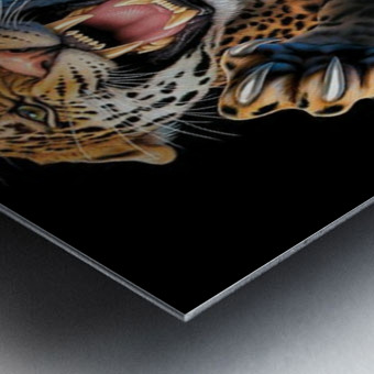 PicsArt_06 30 07.13.06 Metal print