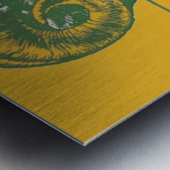 vintage colorado state university rams wood sign Metal print
