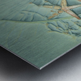 Starfish Image Art Metal print