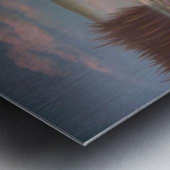 water lillies Metal print