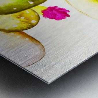 water color cactus flower Metal print