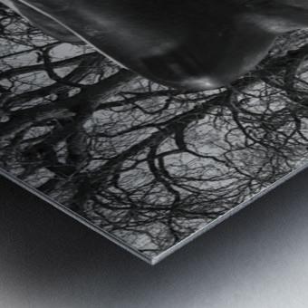 Two Large Forms at Grange Park 1 Metal print
