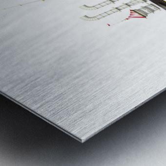 Crocciere Olympikus Metal print