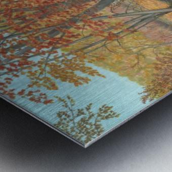 Two Rivers - Newtown Series 18X24 Metal print