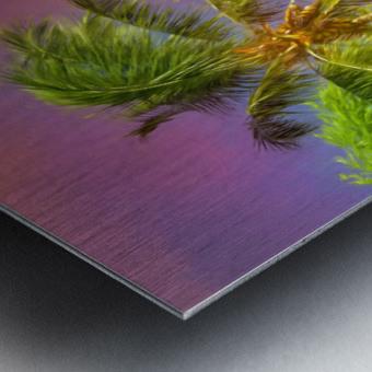 Palms Against The Sky Metal print