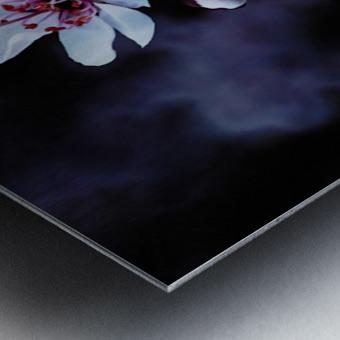 Night Flowers Metal print
