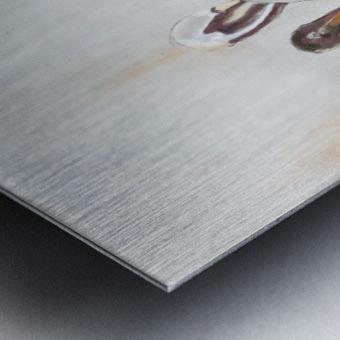 Louisiana Pelicans in the Fog with Metallic Silver Metal print