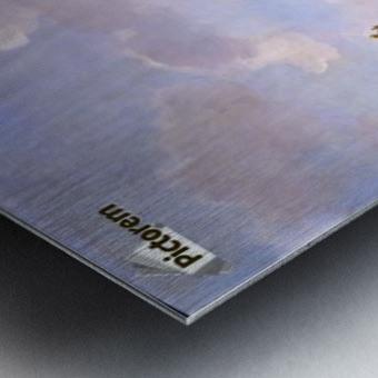 Stichting Vrienden Metal print