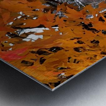 Autumn at Lake Superior Metal print