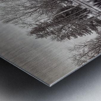 ile Roussin Metal print