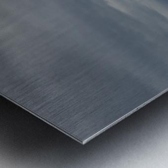 Chevaux Metal print