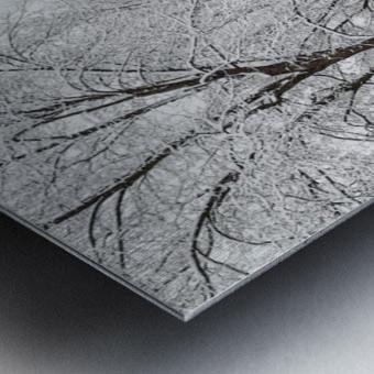 Parade Ground-- Winter Metal print