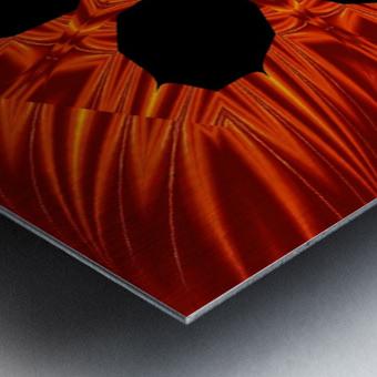 Fire Flowers 106 Metal print