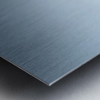 Powder Metal print