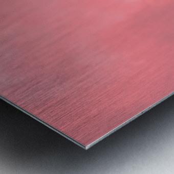 Firn Metal print
