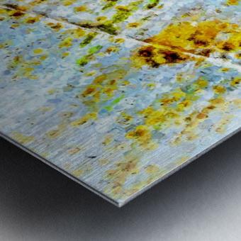 Rusty Barrel Metal print