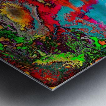Vindalude Metal print