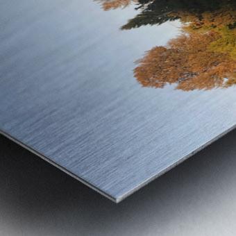 image Metal print