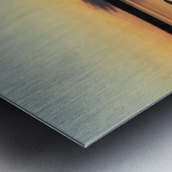 image_1601579335.5489 Metal print