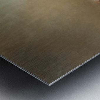 Simplicity of Nature Metal print