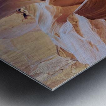 Sunkissed II Metal print
