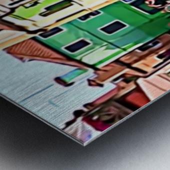 Venisp2 Metal print