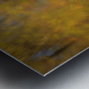 Autumnal swirls reflections 2 Metal print