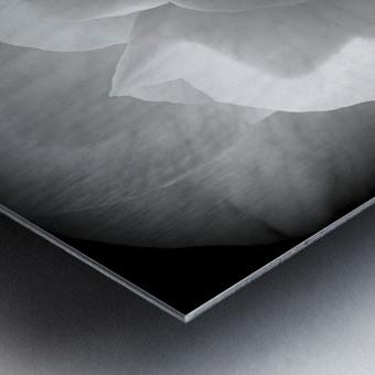 Linen  Metal print