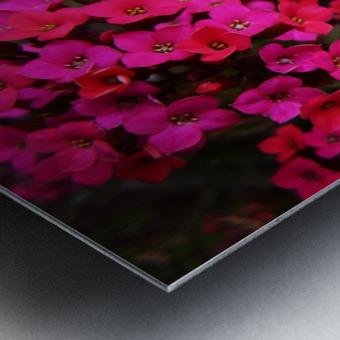 flower29 Metal print