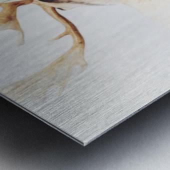 Douceurs Metal print