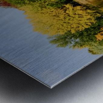 Fall in love with fall Metal print