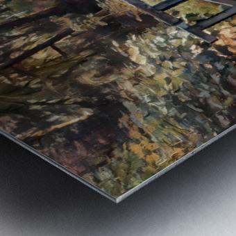 Redwood forrest Metal print
