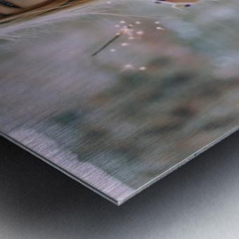 Asia date Metal print