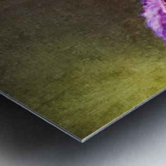 12494253_10153497339628558_1614706987_o Metal print