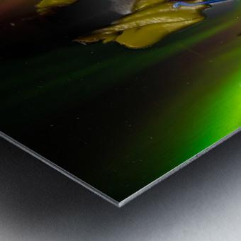 AURORA LANDING Metal print