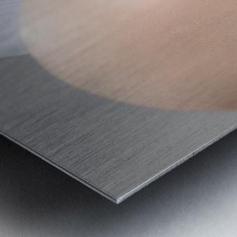 InnerSpace II Metal print