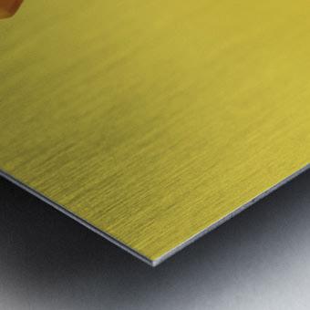 Highliner I Metal print