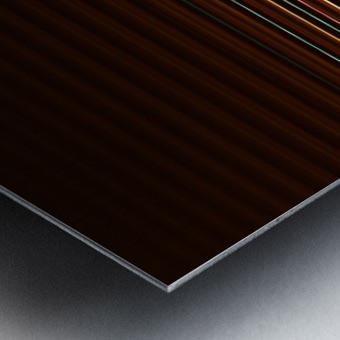 TRAX Metal print