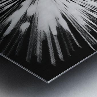 Miracle BNW Metal print