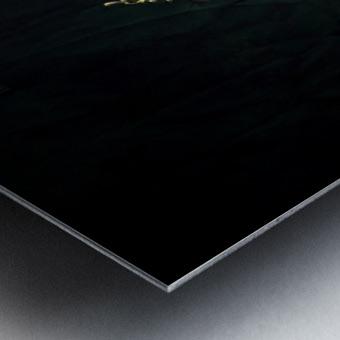 Simplicitude Metal print