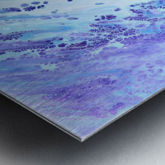 fullsizeoutput 172 Metal print