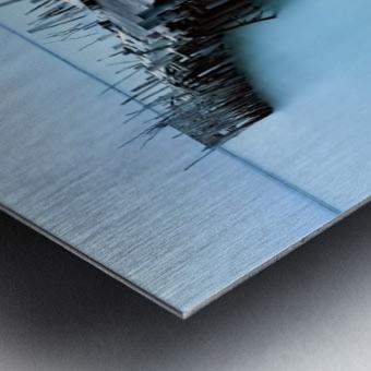 Carrasqueira II Metal print
