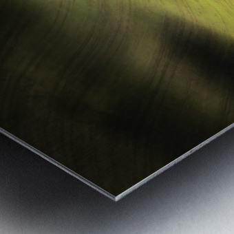 Moravian Fields Metal print