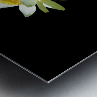 Lotus 1 Metal print