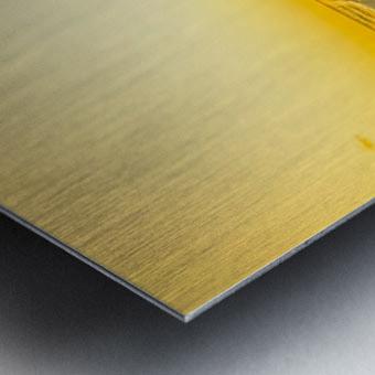 Golden Moment Metal print