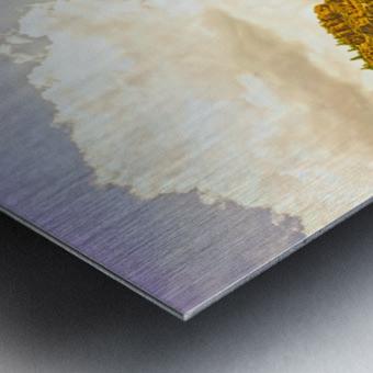 Golden Colorado Metal print