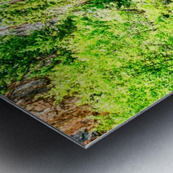 Waterfall Country Colorado 3 of 4 Metal print