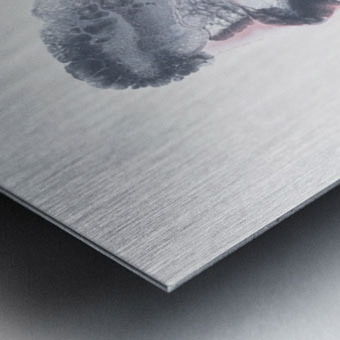 She Effervesces Metal print